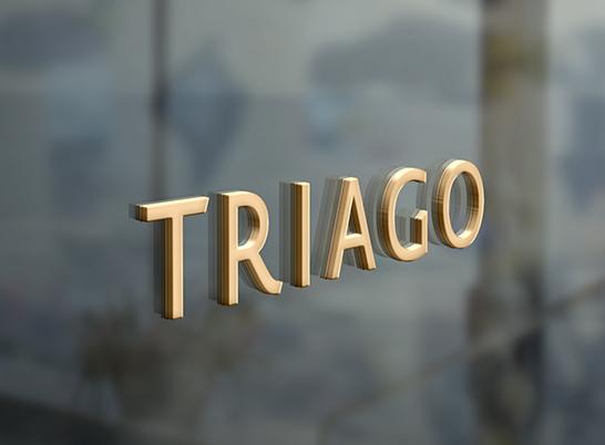 HS_work_Triago_03