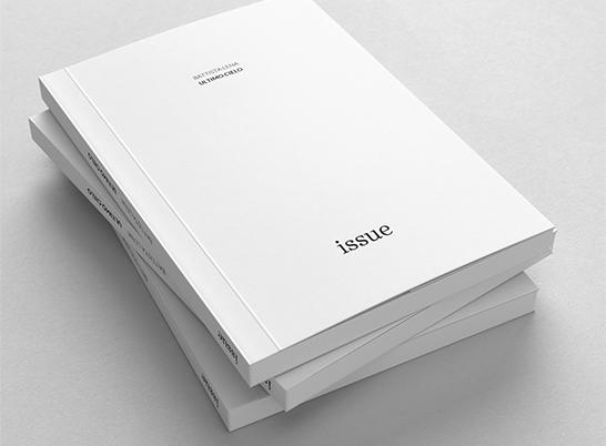 HS_work_Issue_raster_14